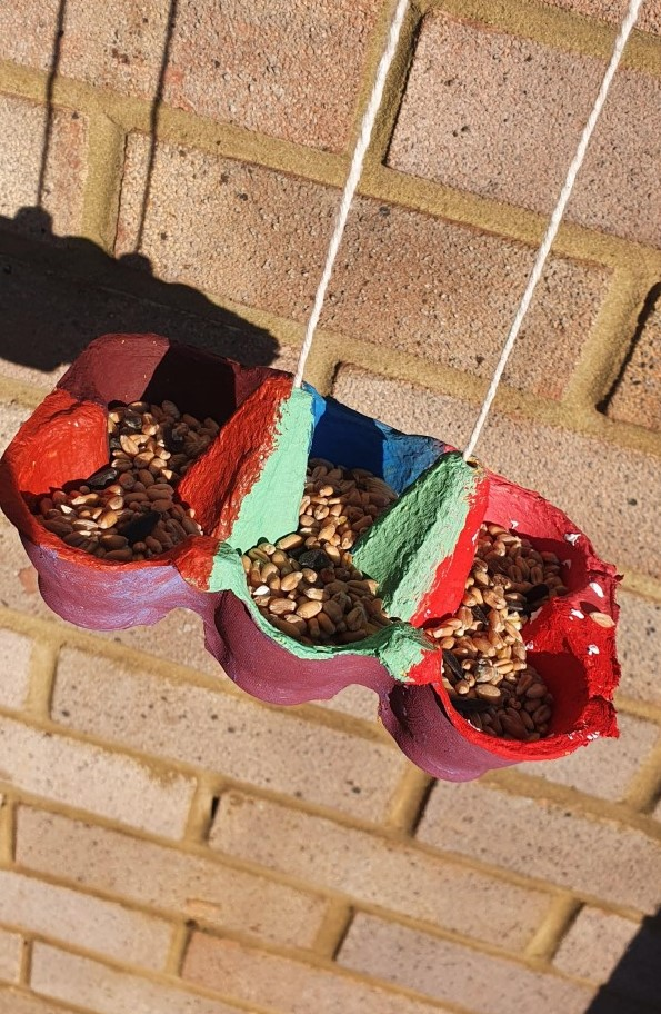 Bird feeder made from an old egg box